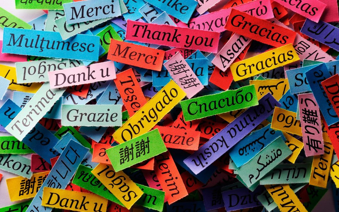 What Language Pays The Most? Here Are The 9 Languages In The List