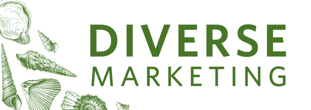 Diversity Marketing Concept and Achieving Complete Success